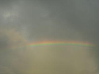 rainbow2014.jpg